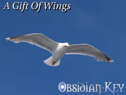 A Gift Of Wings is one of the most beautiful Prog Rock atmospheric short instrumental song!